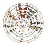 porcelain-wedding-plate-butterfly-design-106690